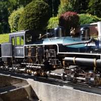 Shay Steam Locomotive